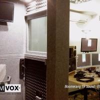 Demvox-Boomerang-TX-Sound-ECO100-1
