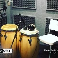 Demvox-Bonobo-Studio-DV416-4
