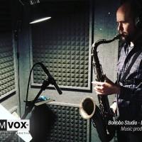 Demvox-Bonobo-Studio-DV416-6