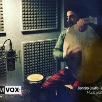 Demvox-Bonobo-Studio-DV416-9