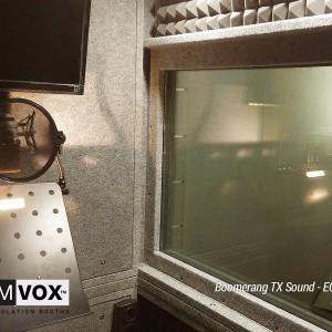 Demvox-回旋镖-TX-声音 -  ECO100-2