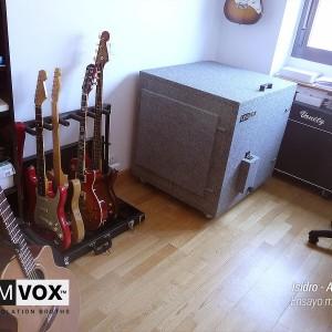 Demvox-Isidro-AMP36-2